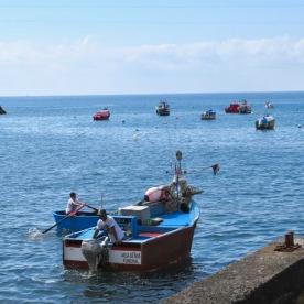 Fishermen in Lobos Bay