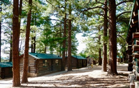 Log cabin lodging